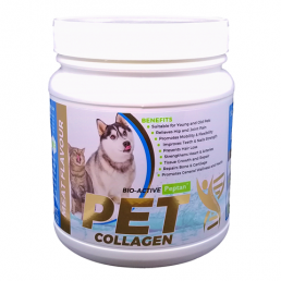 3. PET Collagen